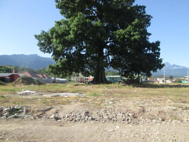Lote de terreno Villa Palestina. La Ceiba Honduras